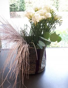Hygge Pflanze