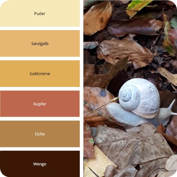 Farben für den naturellen Wohnstil